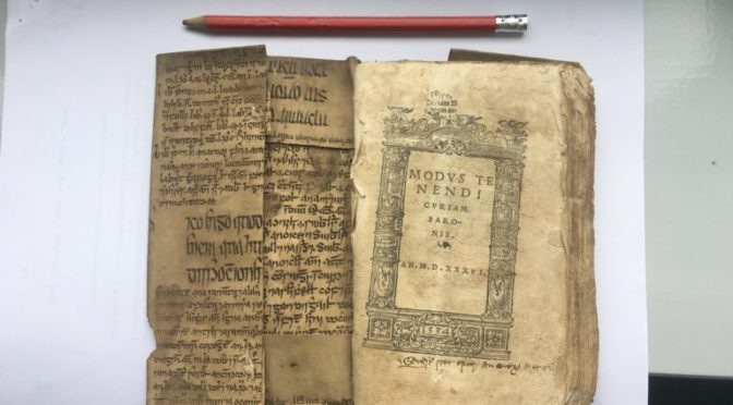 Medieval Irish Avicenna fragment found in English book